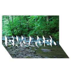 Rocky Stream Engaged 3d Greeting Card (8x4)