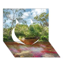 CANO CRISTALES 3 Heart 3D Greeting Card (7x5)