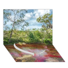 Cano Cristales 3 Heart Bottom 3d Greeting Card (7x5)