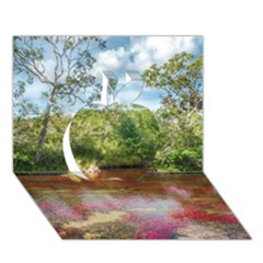 CANO CRISTALES 3 Apple 3D Greeting Card (7x5)