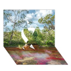 Cano Cristales 3 Ribbon 3d Greeting Card (7x5)