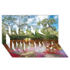 CANO CRISTALES 3 Best Wish 3D Greeting Card (8x4)