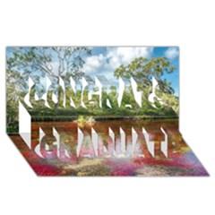 CANO CRISTALES 3 Congrats Graduate 3D Greeting Card (8x4)