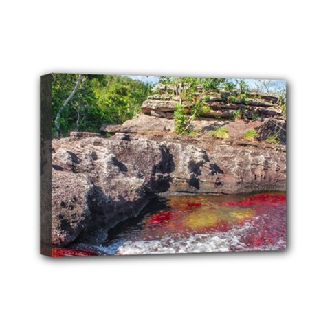 CANO CRISTALES 2 Mini Canvas 7  x 5