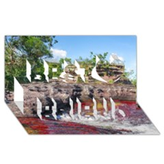 CANO CRISTALES 2 Best Friends 3D Greeting Card (8x4)