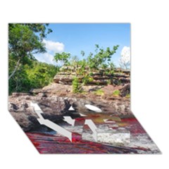 CANO CRISTALES 2 LOVE Bottom 3D Greeting Card (7x5)