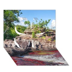 Cano Cristales 2 Clover 3d Greeting Card (7x5)