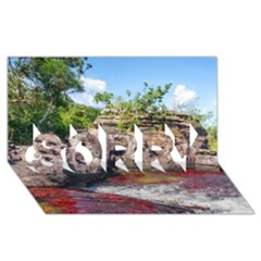 CANO CRISTALES 2 SORRY 3D Greeting Card (8x4)