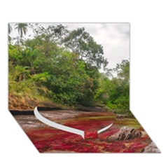 Cano Cristales 1 Heart Bottom 3d Greeting Card (7x5)