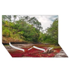 Cano Cristales 1 Twin Heart Bottom 3d Greeting Card (8x4)