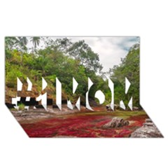 Cano Cristales 1 #1 Mom 3d Greeting Cards (8x4)