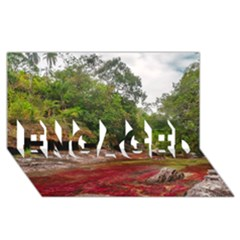 CANO CRISTALES 1 ENGAGED 3D Greeting Card (8x4)