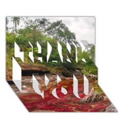 CANO CRISTALES 1 THANK YOU 3D Greeting Card (7x5)