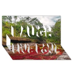 CANO CRISTALES 1 Laugh Live Love 3D Greeting Card (8x4)