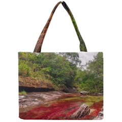 CANO CRISTALES 1 Tiny Tote Bags