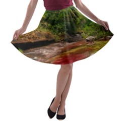 CANO CRISTALES 1 A-line Skater Skirt