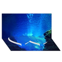 Underwater Trench Twin Heart Bottom 3d Greeting Card (8x4)