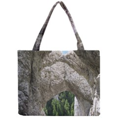 LIMESTONE FORMATIONS Tiny Tote Bags