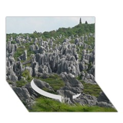 STONE FOREST 1 Circle Bottom 3D Greeting Card (7x5)