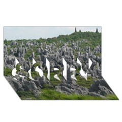 STONE FOREST 1 SORRY 3D Greeting Card (8x4)