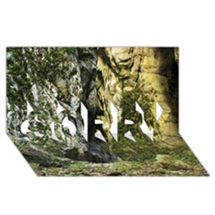 MOUNTAIN PATH SORRY 3D Greeting Card (8x4)