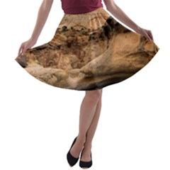 CAPITAL REEFS A-line Skater Skirt