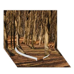 WOOD SHADOWS Heart Bottom 3D Greeting Card (7x5)