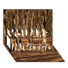 Wood Shadows You Are Invited 3d Greeting Card (7x5)