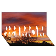 Orange Sunset #1 Mom 3d Greeting Cards (8x4)