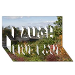 Natural Arch Laugh Live Love 3d Greeting Card (8x4)