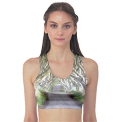 Dark Hedges, Ireland Sports Bra