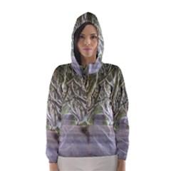 DARK HEDGES, IRELAND Hooded Wind Breaker (Women)