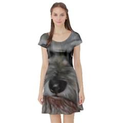 The Schnauzer Short Sleeve Skater Dresses