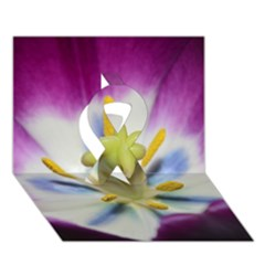 Purple Beauty Ribbon 3D Greeting Card (7x5)