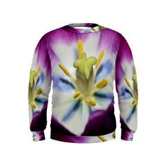Purple Beauty Boys  Sweatshirts
