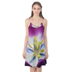 Purple Beauty Camis Nightgown