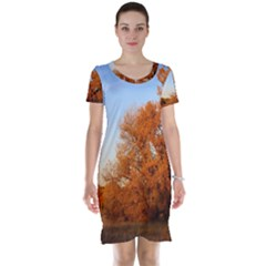 BEAUTIFUL AUTUMN DAY Short Sleeve Nightdresses