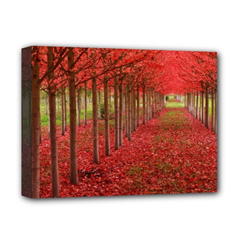 AVENUE OF TREES Deluxe Canvas 16  x 12