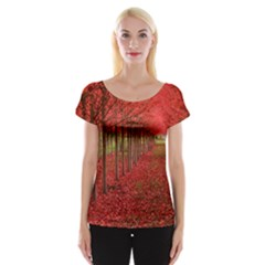 AVENUE OF TREES Women s Cap Sleeve Top