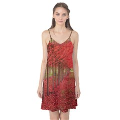 AVENUE OF TREES Camis Nightgown