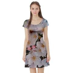 SAKURA Short Sleeve Skater Dresses
