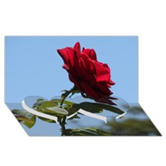 Red Rose 2 Twin Heart Bottom 3d Greeting Card (8x4)