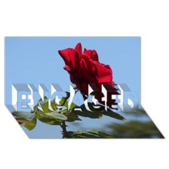 Red Rose 2 Engaged 3d Greeting Card (8x4)