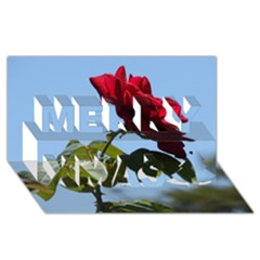 RED ROSE 2 Merry Xmas 3D Greeting Card (8x4)