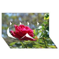 RED ROSE 1 Twin Hearts 3D Greeting Card (8x4)