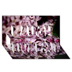 PURPLE LILACS Laugh Live Love 3D Greeting Card (8x4)