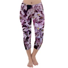 PURPLE LILACS Capri Winter Leggings