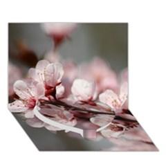 Plum Blossoms Heart Bottom 3d Greeting Card (7x5)