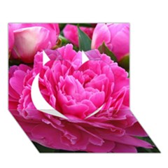 Paeonia Eleanor Heart 3d Greeting Card (7x5)