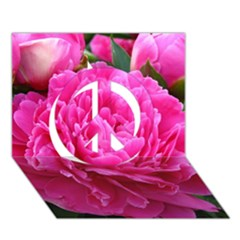 PAEONIA ELEANOR Peace Sign 3D Greeting Card (7x5)